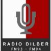 Radio Dilber 93.0 FM