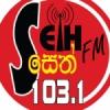 Radio Seth 103.1 FM
