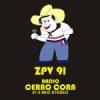 Radio Cerro Corá 91.5 FM