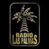 Radio Las Palmas 91.1 FM
