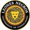 Leones Negros/MEX