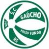 Gaúcho Passo Fundo