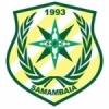 Samambaia